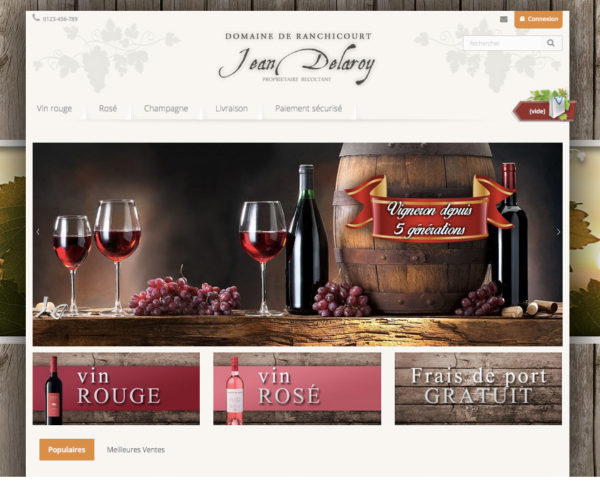 template e-commerce dropshipping vin et champagne