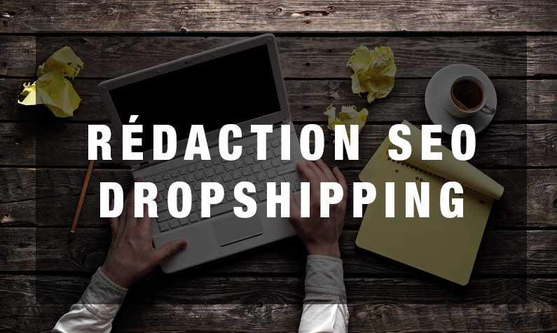 rédaction SEO vendre en dropshipping