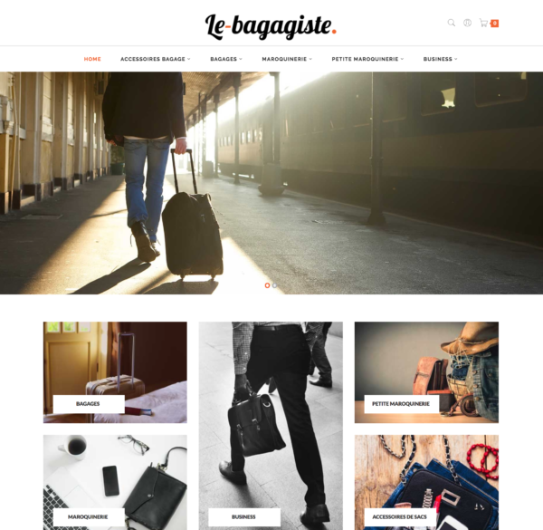e-commerce dropshipping maroquinerie et bagagerie