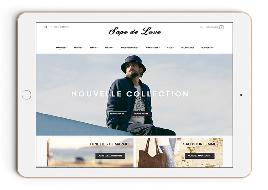 dropshipping-professionnel