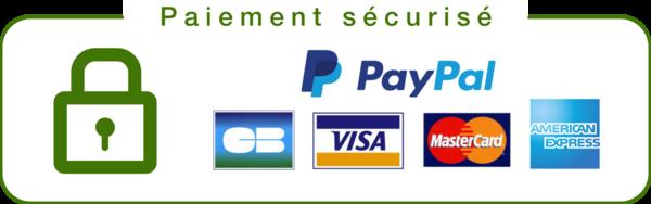 Badges de sécurité paiement sécurisé e-commerce en Dropshipping