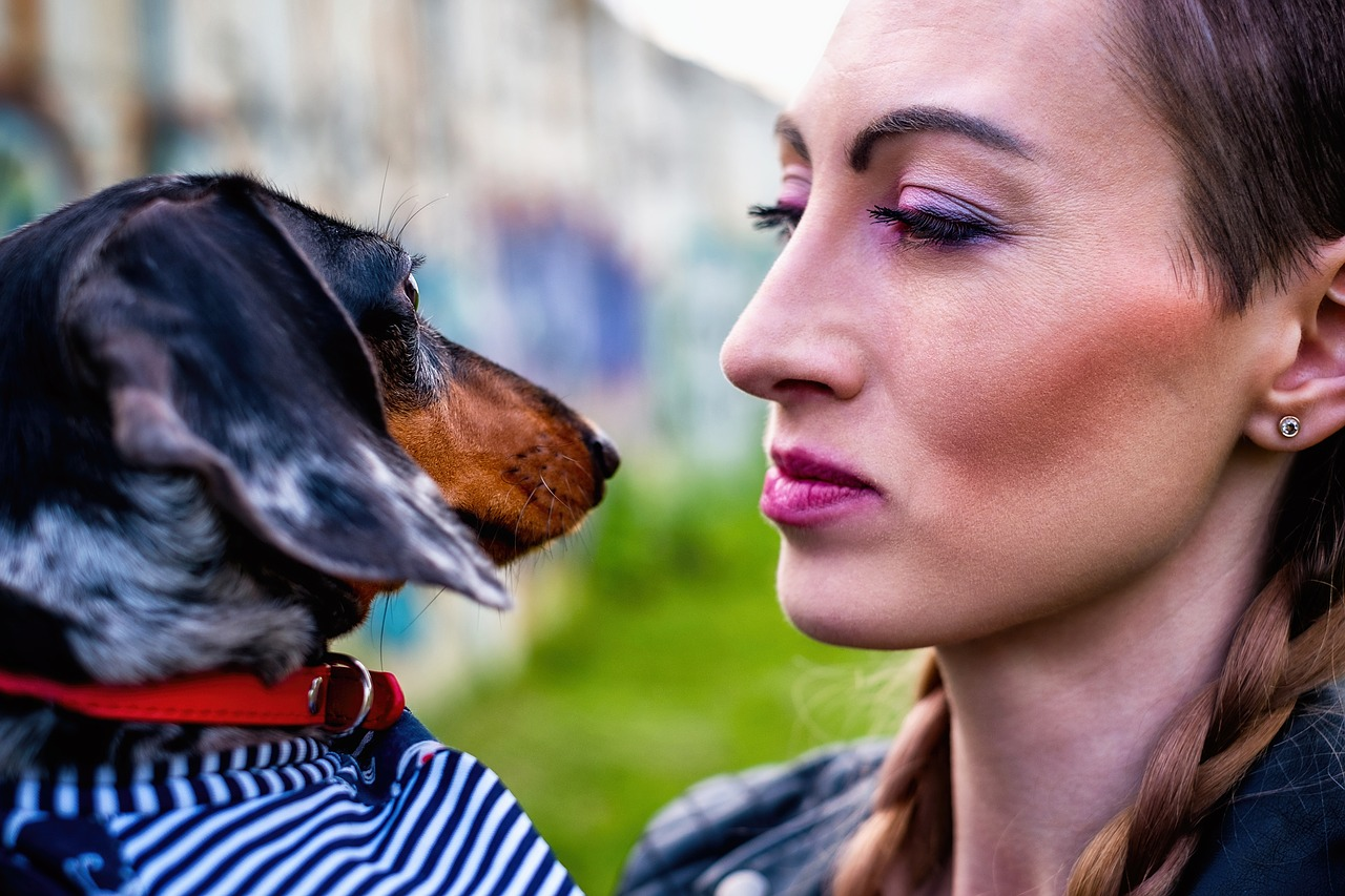 Le marché des animaux domestiques est un marché incessant car c'est un marché de passionné